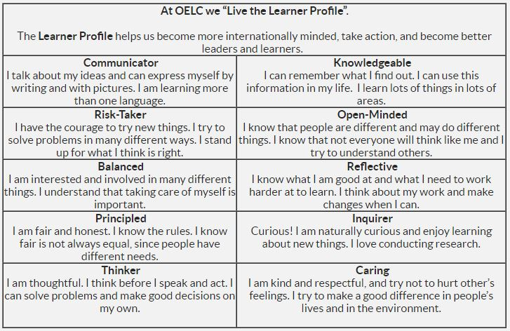 Learner Profile chart